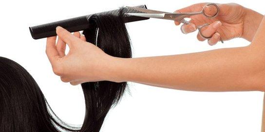 Friseur, Hand mit Schere