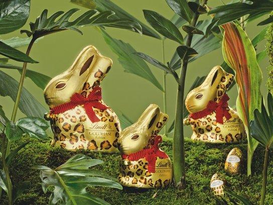 Drei goldene Schokoladenhasen