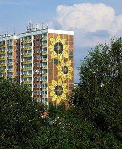 Sonnenblumenhaus Rostock