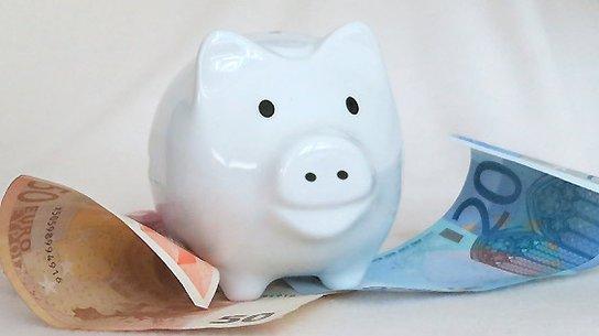 Sparschwein mit Euro-Scheinen